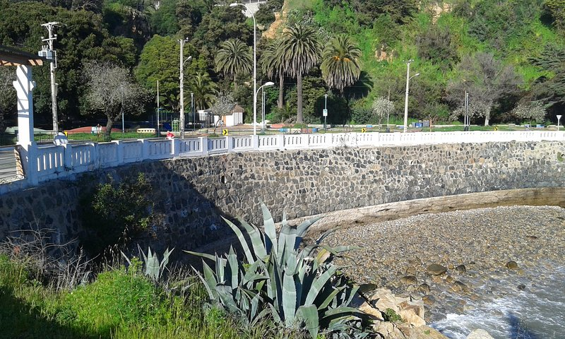 View of a section of the Avenida Altamirano, ideal for walking with family
