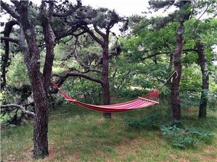 Há muitos lugares para relaxar