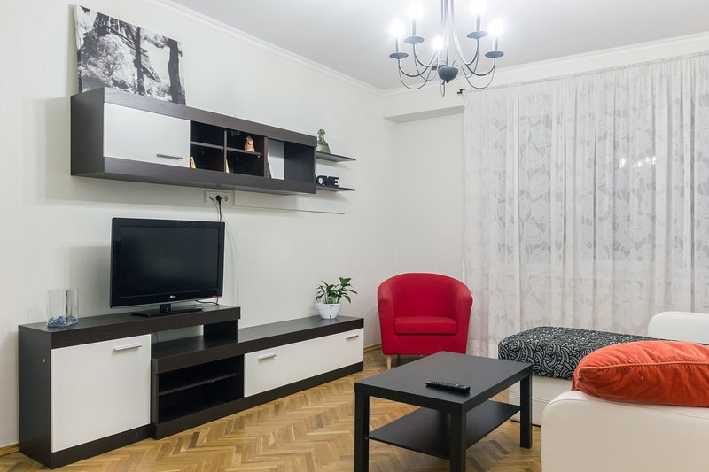 Nice and cozy two-room apartment on main street Chisinau, vacation rental in Chisinau