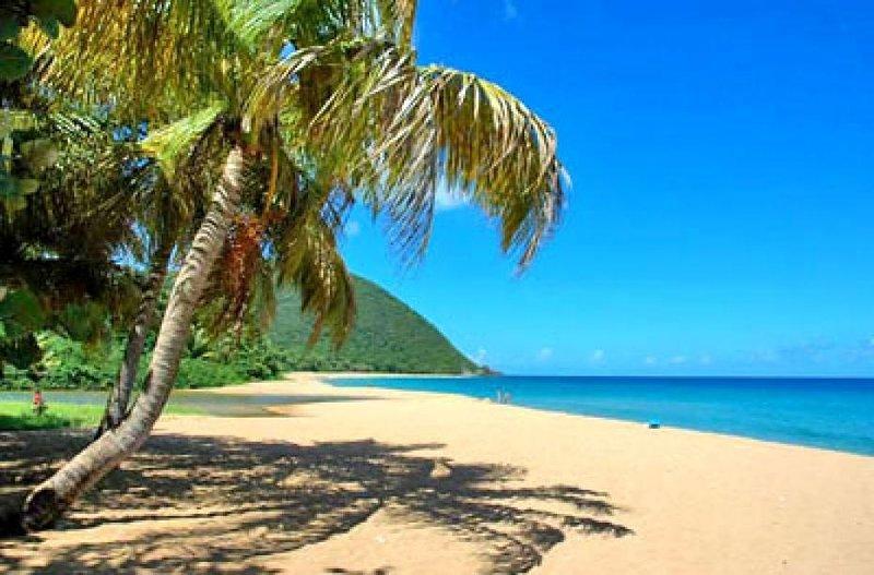 Deshaies beach and white sands