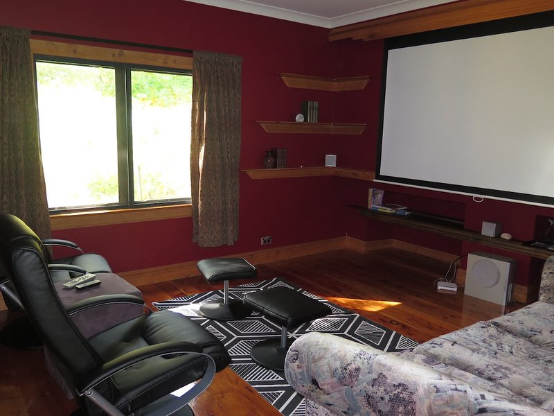 Media room with a sofabed
