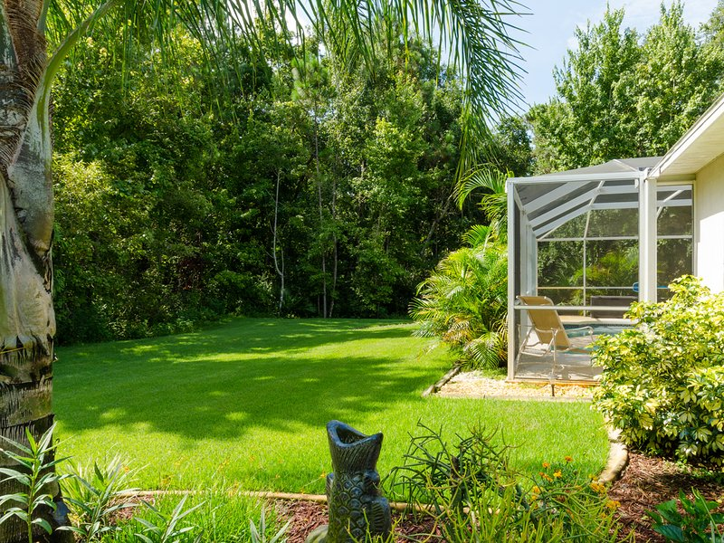 Your very own park-like yard, surrounded by palm trees!