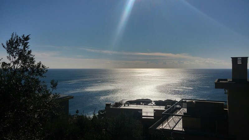 Pieve Ligure - Relaxing garden and sea view flat CITRA 010043-LT-0026, vakantiewoning in Pieve Ligure
