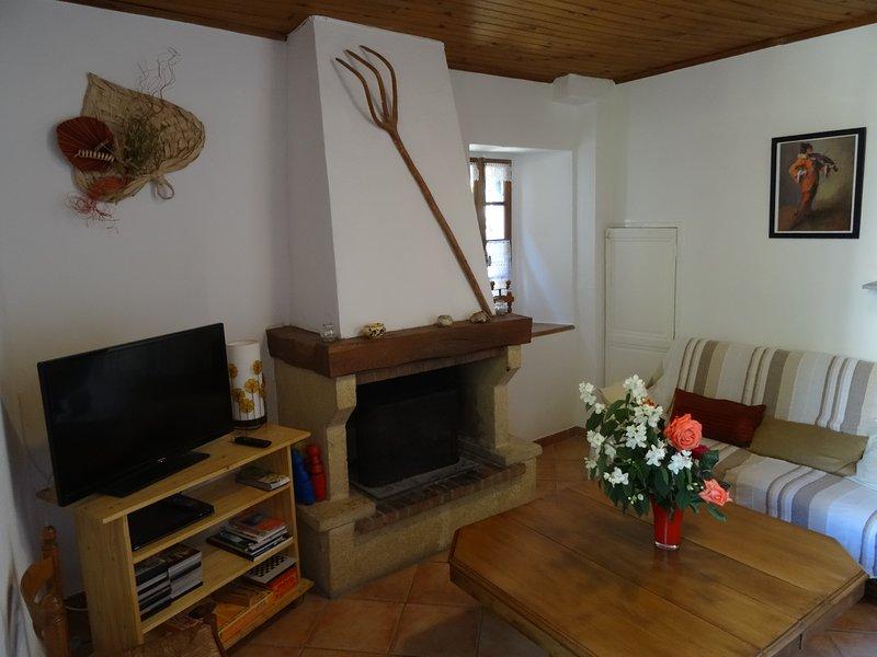La maison de Papé Scilou, holiday rental in Vieussan