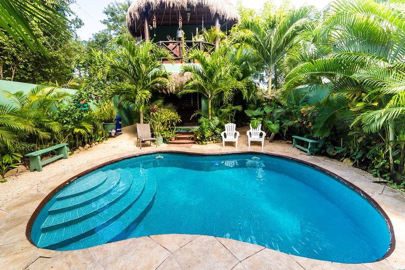 Spectacular Botanical Garden surrounds a beautiful pool and youe outdoor kitchen overlooks all this