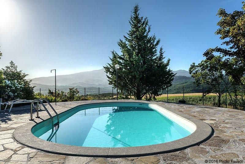 Rosa Apartament with pool, Poggio Rineschi,Maremma, holiday rental in Montenero d'Orcia