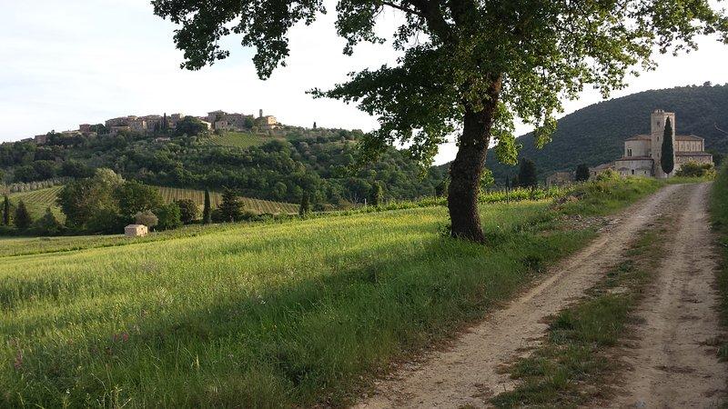 Spring to Borghetto