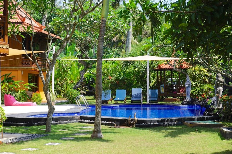 Garden view of pool and shaded kiddies end.