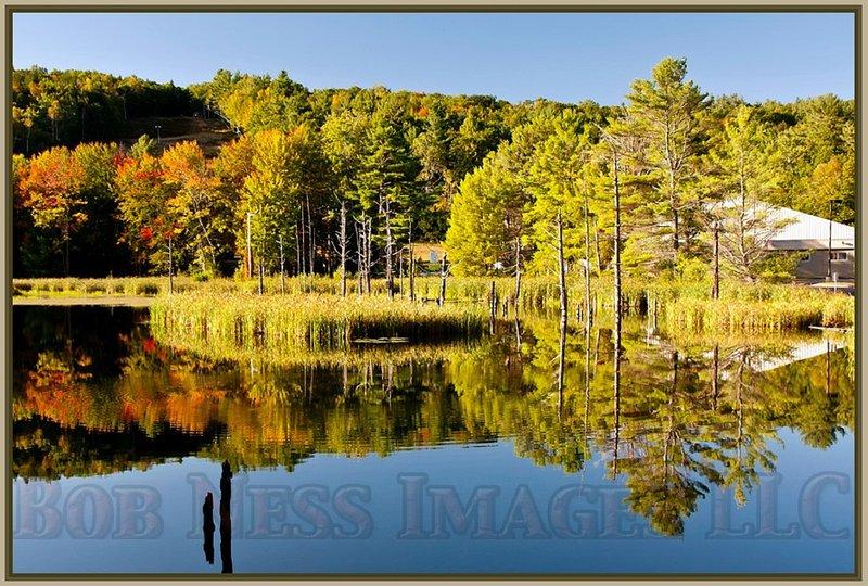 Portsmouth Pond Cabin#6 of 12, for 2-8 Guest, Wolfeboro, near Lake Winnipesaukee, aluguéis de temporada em Wolfeboro