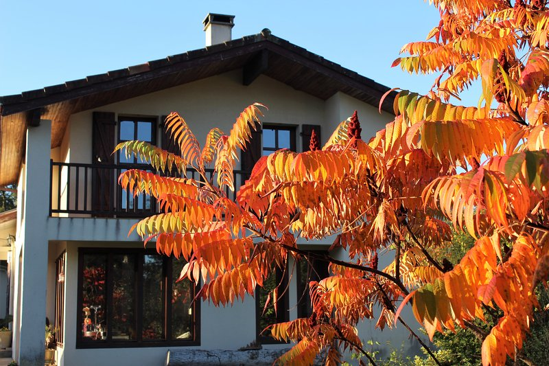The house in autumn colors