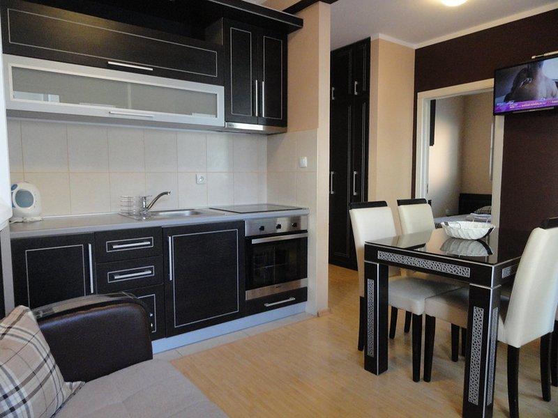 Twobedroom modern apartment near the beach & city centre, holiday rental in Budva