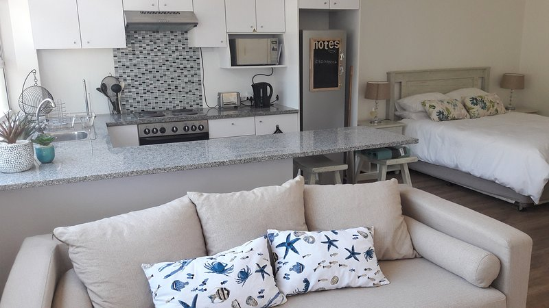Spacious Studio - Seapoint, Cape Town, holiday rental in Three Anchor Bay