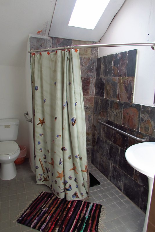 Open concept bathroom with handicapped facilities.