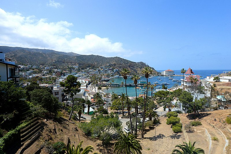 130 Middle Terrace, vacation rental in Catalina Island