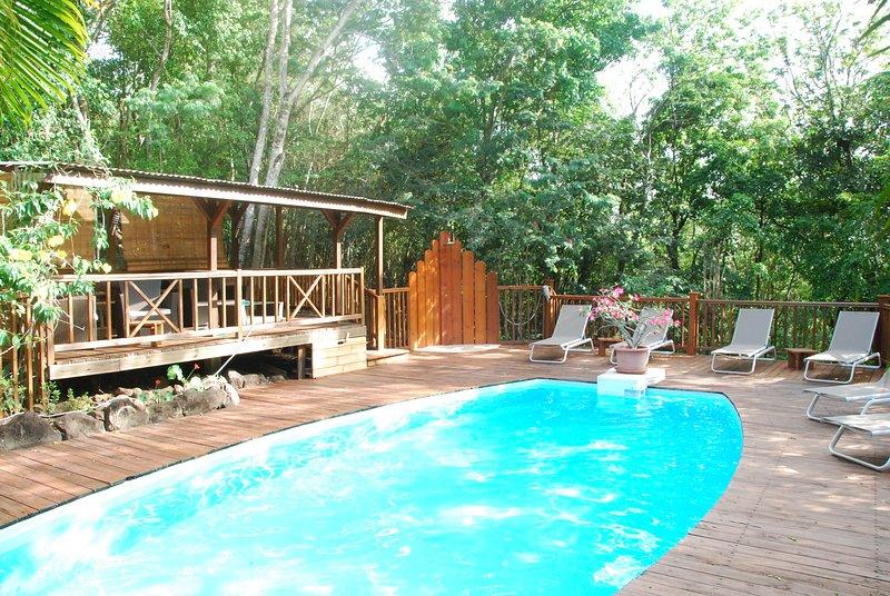 24/24 Swimming pool open the garden of hummingbirds