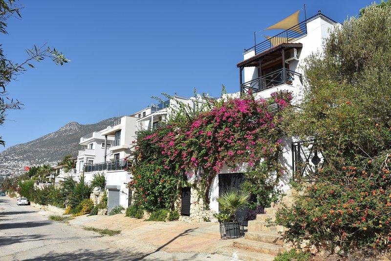 Bienvenido a la hermosa 'Villa Angora'!