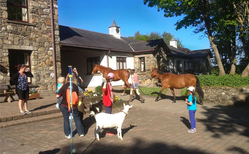 Walking the goats as the ponies pass by on a sunny summer evening