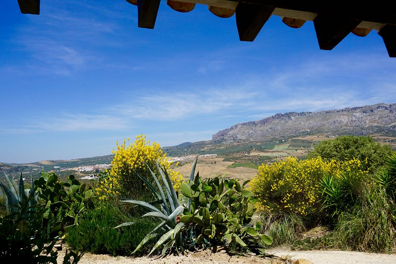 Beautiful cottage on Spanish cortijo – semesterbostad i Casabermeja