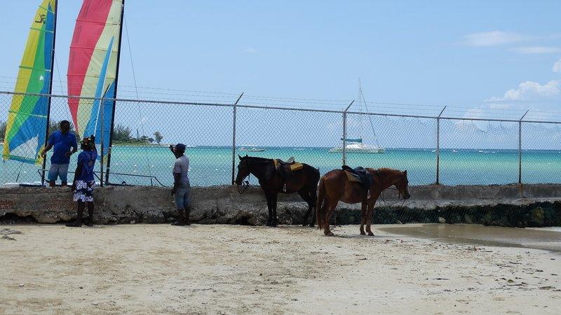 White sand beach adjacent to Jewel's Resort