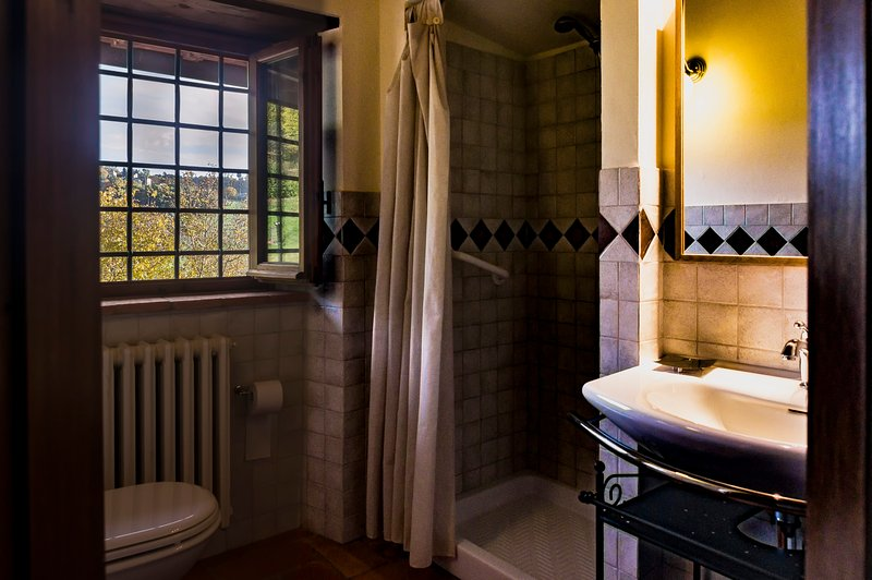Antica bathroom with shower enclosure