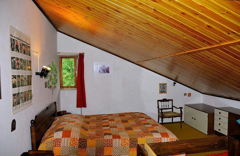 Room in the attic with a double bed and two single beds