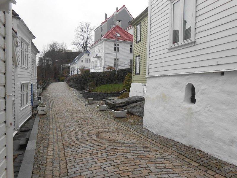 Nedre Strangehagen - la calle que va a venir