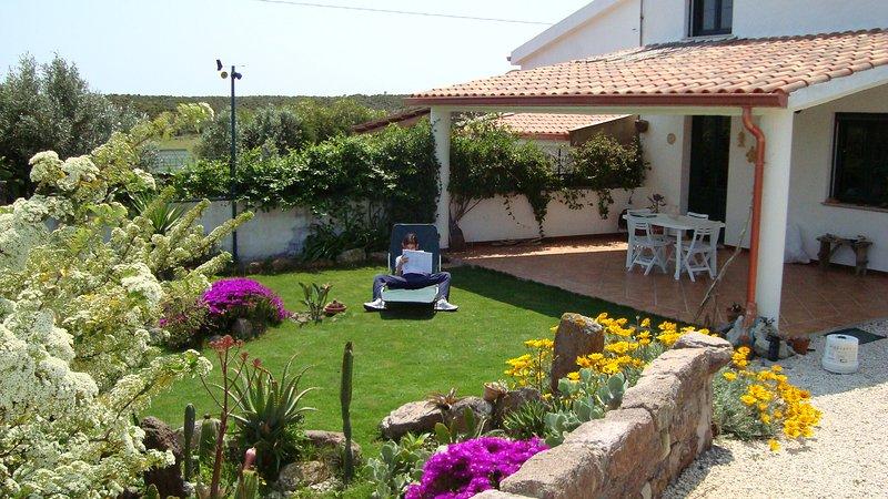 Garden opposite the house