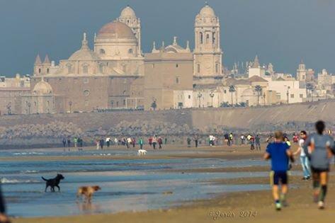 Oferta piso verano en Cádiz. Junto a playas., casa vacanza a Cadice