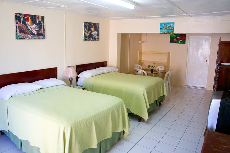The Irie Inn Room 4,  Montego Bay, Jamaica, vacation rental in Montego Bay