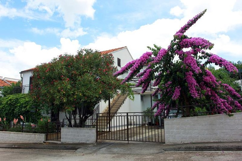 Marija - free parking A Marija(4) - Supetar, vacation rental in Supetar