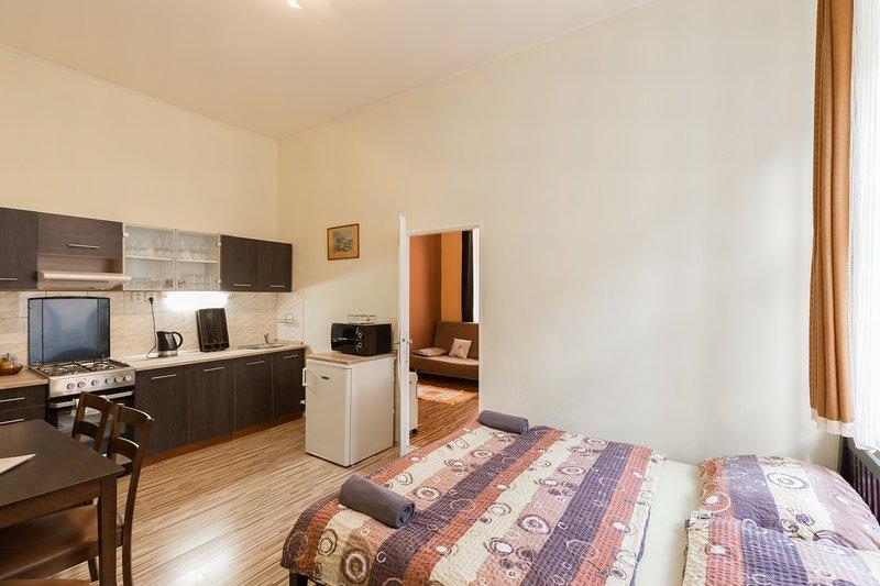 Bedroom / dinning room / kitchenette
