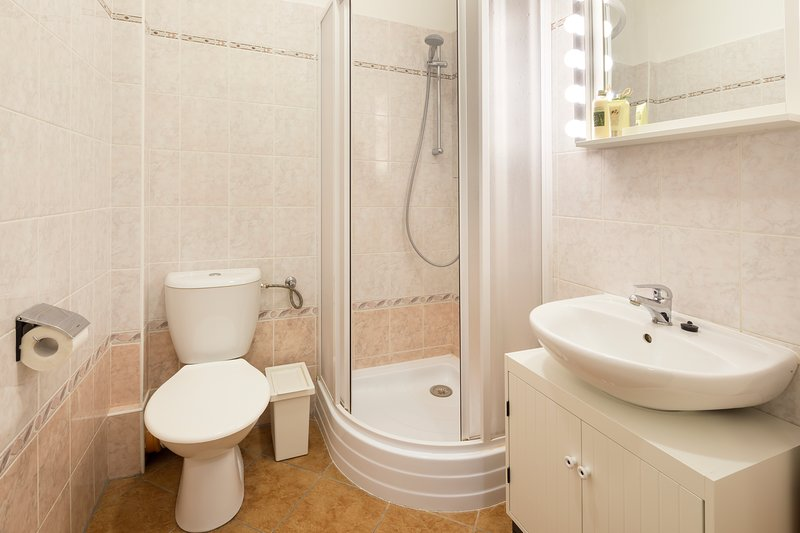 Private bathroom with shower and toilet