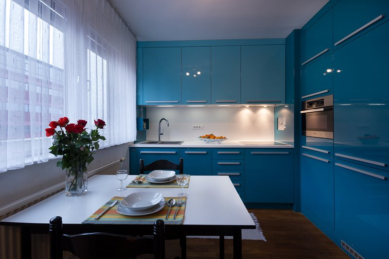 Fully equipped kitchen - dishes, cutlery, oven, stove, toaster, kettle, coffee machine, dishwasher..