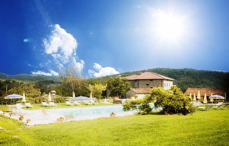 Amazing apt with shared pool, vacation rental in Caprese Michelangelo