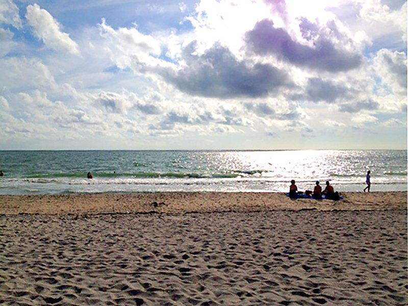 The Sanibel Beaches are terrific