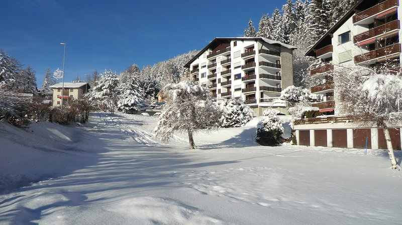 11 Lisière-Sud A, Crans Montana, holiday rental in Crans-Montana