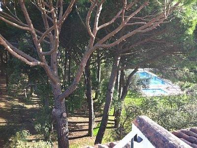 Parque y la piscina vistas desde el solarium