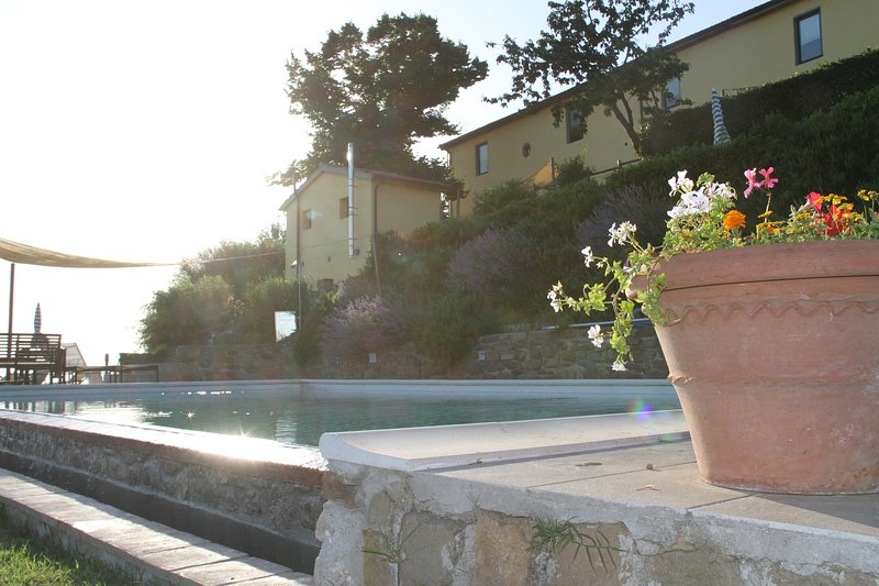 Panoramic Apartments in anciant rural villa, total relax and pool, vacation rental in Mezzana