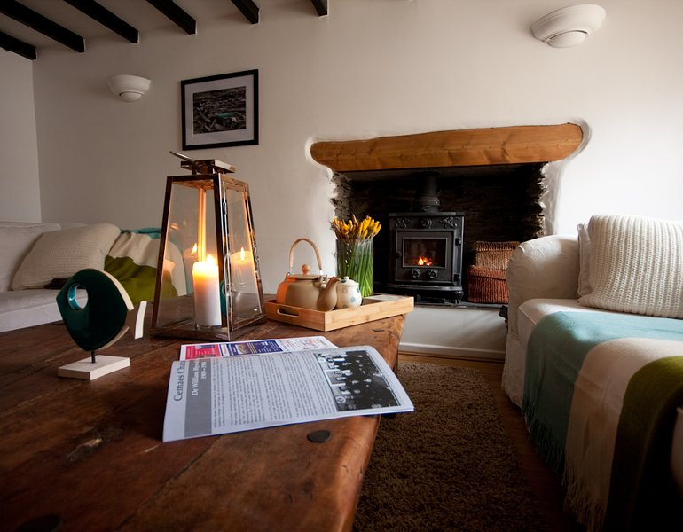 The cosy living room with the wood burning stove