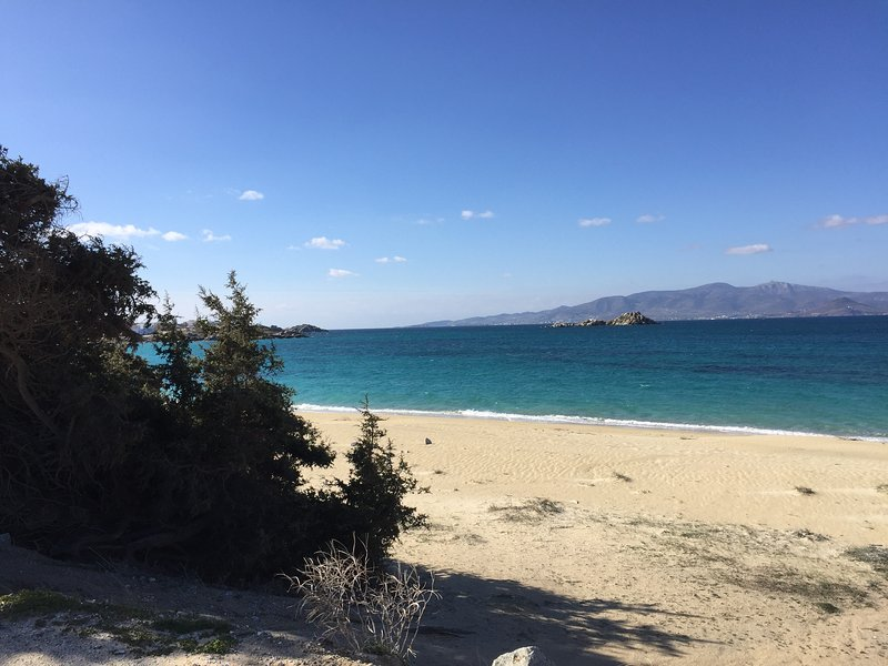 Depis Bay plaka naxos apartment for 5 with sea view, vacation rental in Naxos