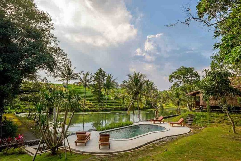 Authentic Balinese holidays in the rice fields, holiday rental in Tabanan