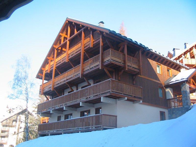 Direct to ski slopes, location de vacances à Allemond