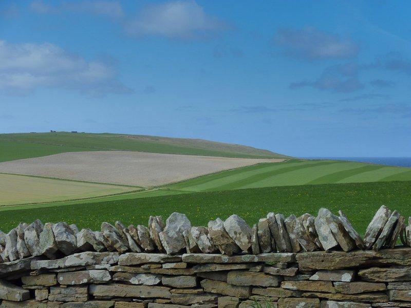 Alguns paisagem típica Orkney