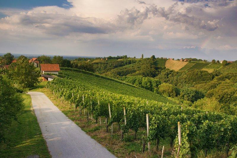Turistična kmetija Dervarič- vinefarm, holiday rental in Strigova