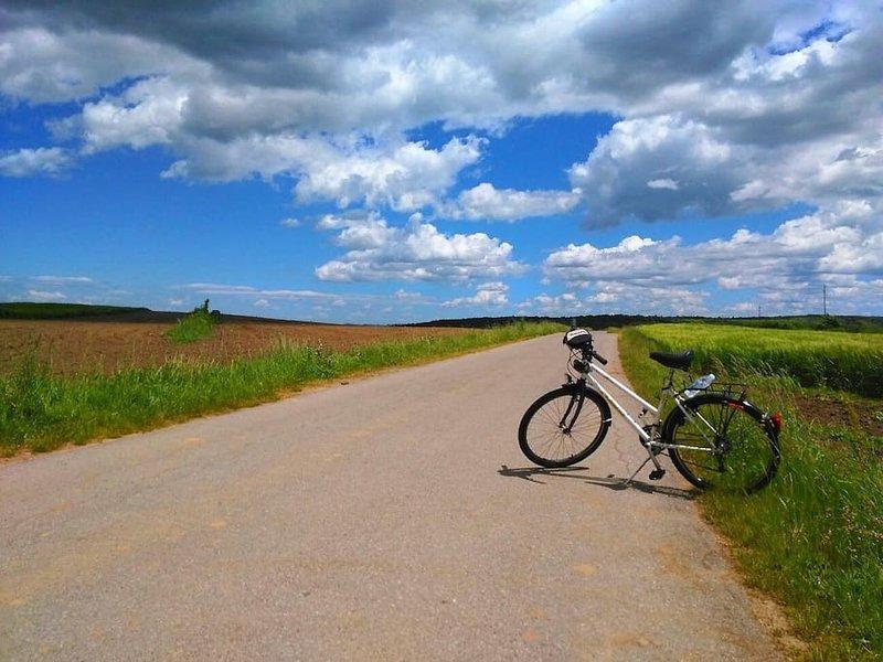 Sur mon chemin vers les grottes Barac. Convient pour le vélo ou en voiture, si vous n'avez pas beaucoup de voiture. Mais, belle route