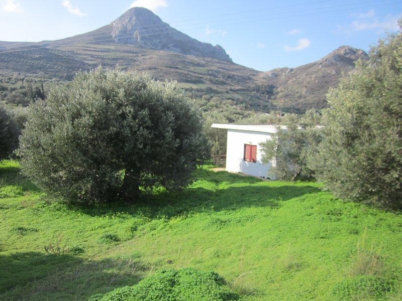 Nikola's House - quiet farmhouse, holiday rental in Lefkogia