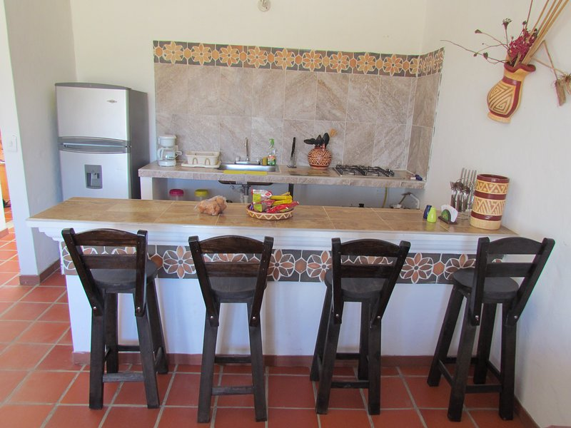 equipped kitchen with utensils, fridge and American style bar