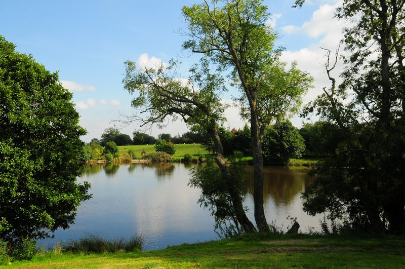 Fishing lake available to all guests