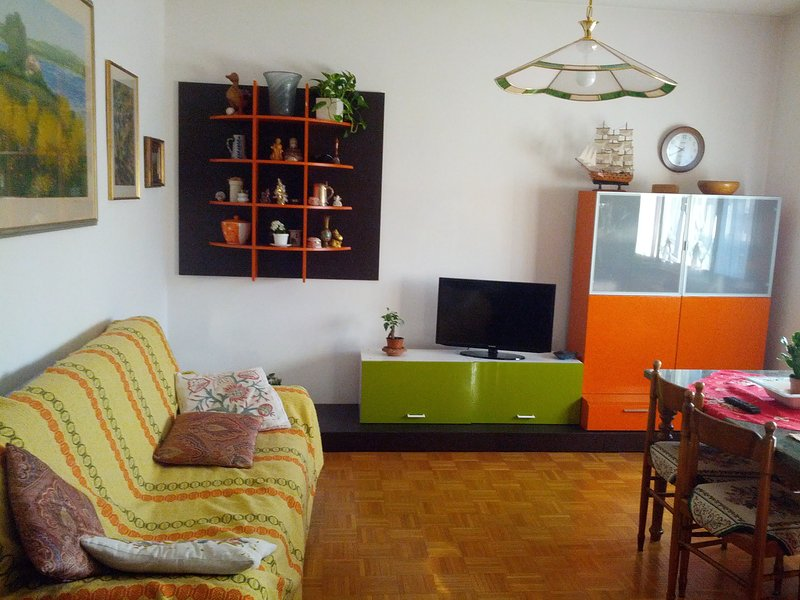 Apartment whit two bed room, bath room private, vakantiewoning in Noventa Padovana