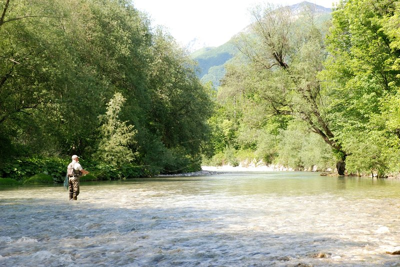 Fly fishing in the Idrijca river